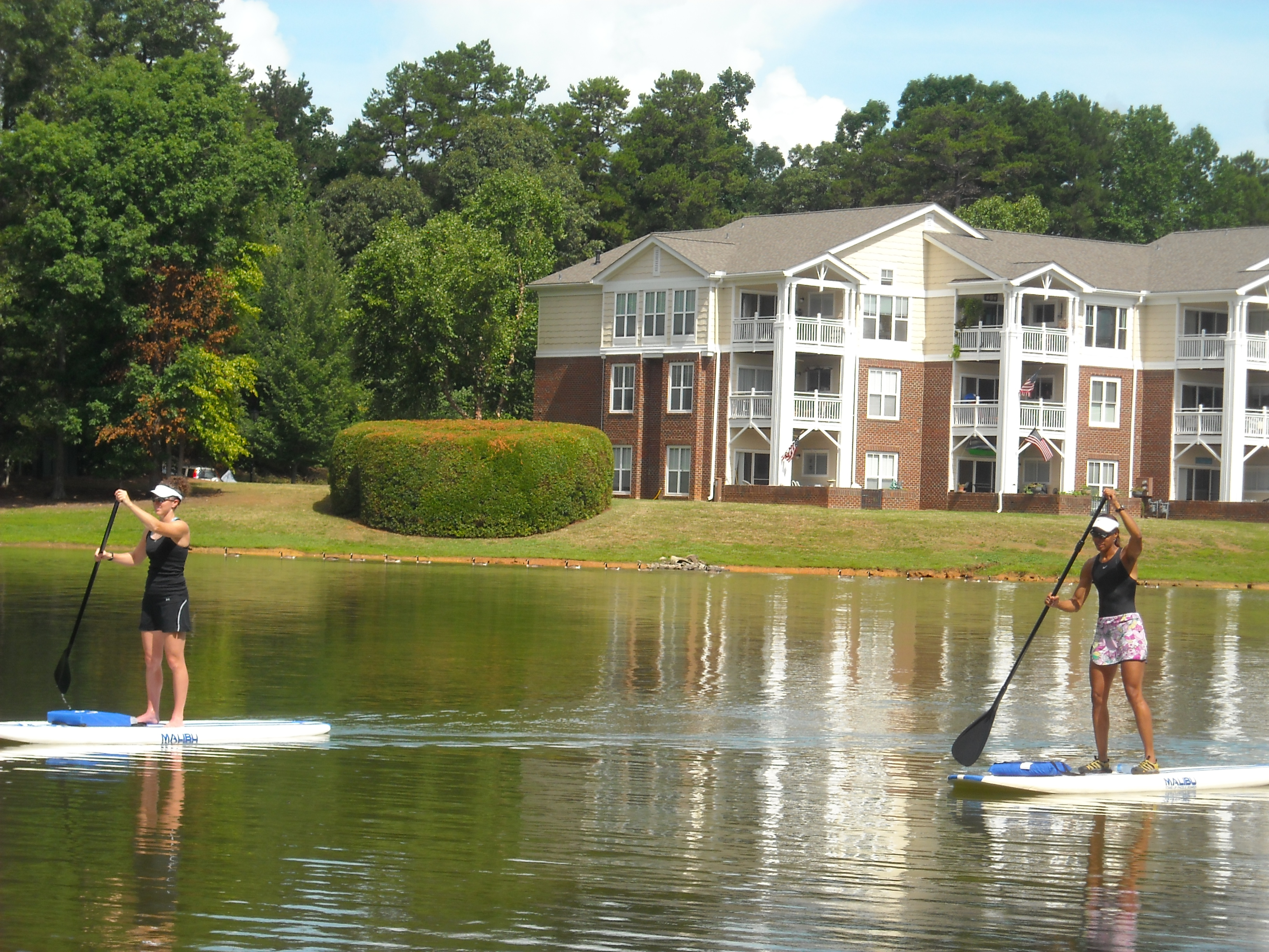 Two People Paddle Boarding